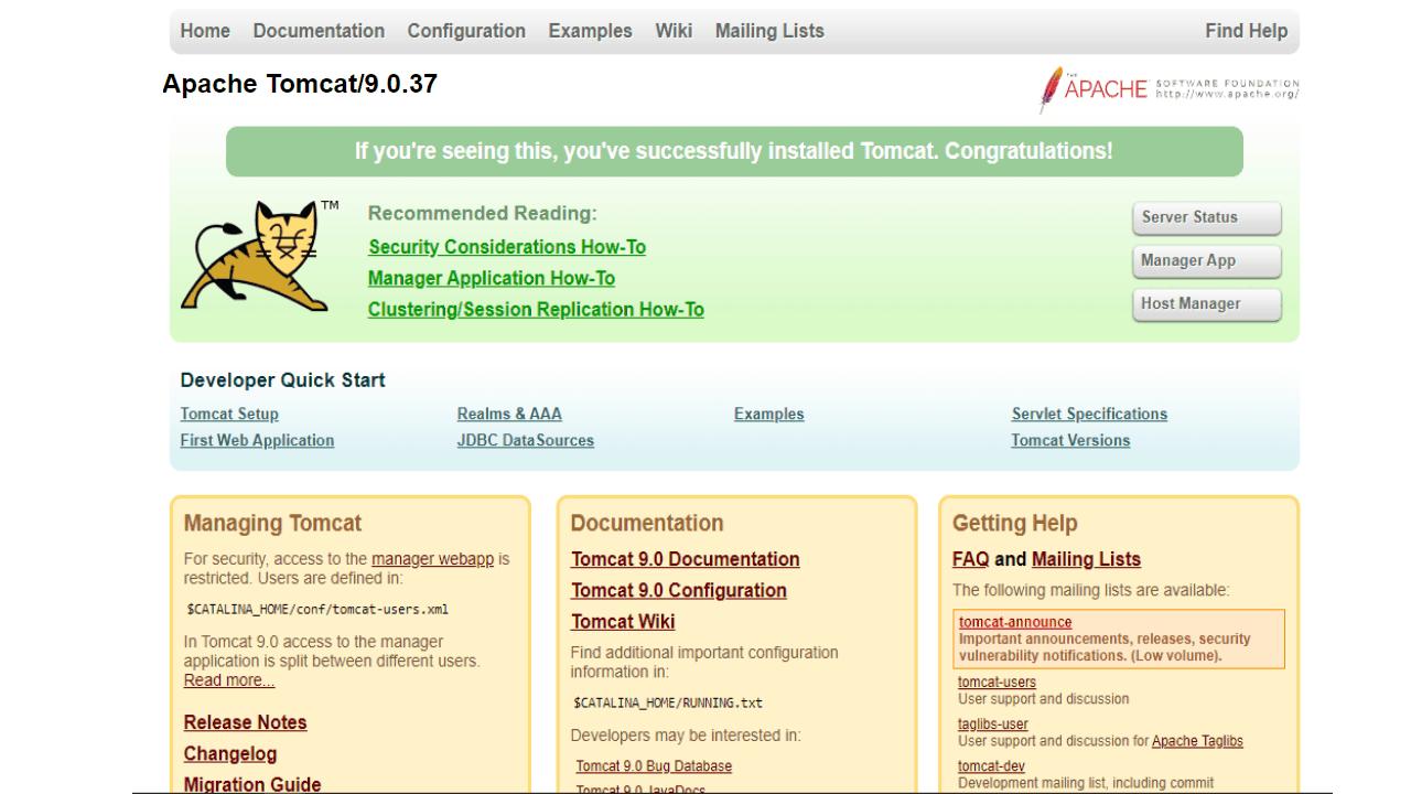 Tomcat_Screenshot