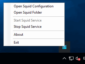 squid windows